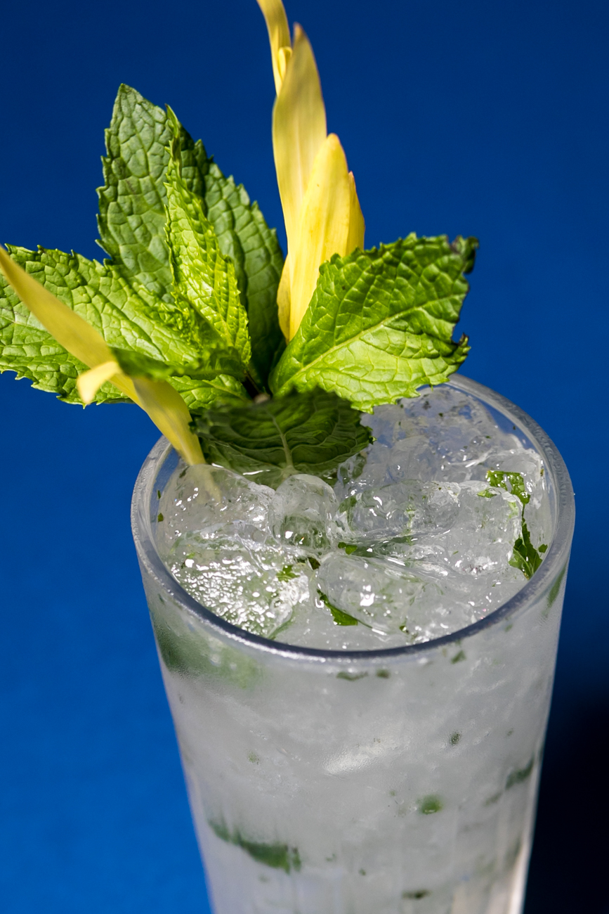 The Mojito: Bacardi rum, mint, and simple syrup, and soda / Image: Amy Elisabeth Spasoff // Published: 8.1.18