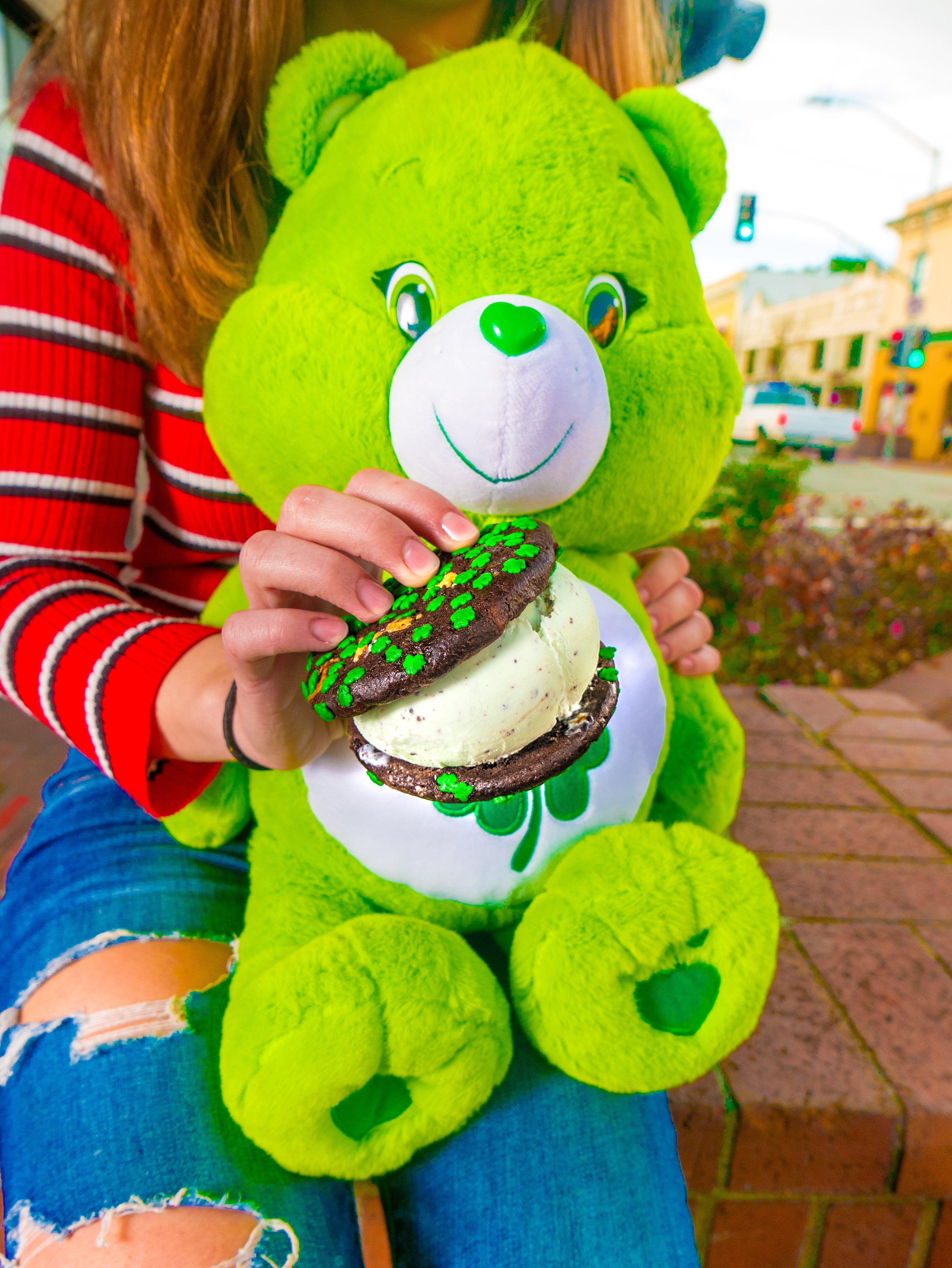 Luck Care Ber Sandwich & plush.jpg