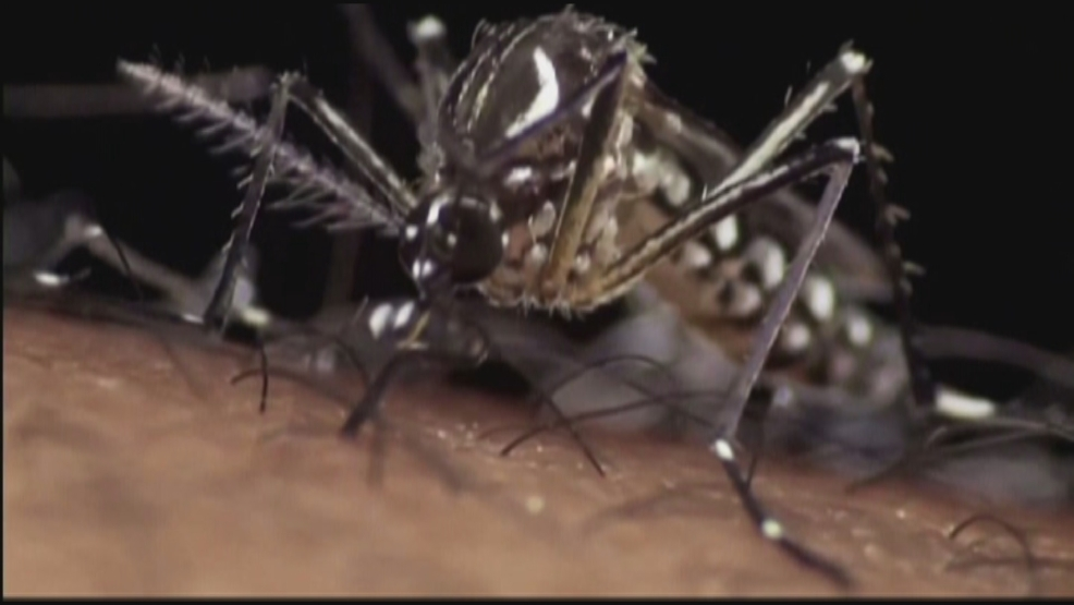Se confirma primer caso de Zika en el estado de Washington
