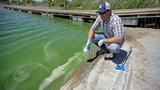 2 areas in Utah Lake under advisory for algal bloom