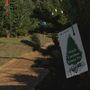 Droughts, fire in North Carolina lead to local Christmas tree shortage