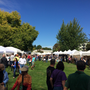 Fall Festival boosts Corvallis economy