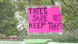 Neighbors petition to save trees in Field Club