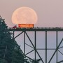 Coca-Cola driver gets caught hauling 'moonshine' across Deception Pass Bridge