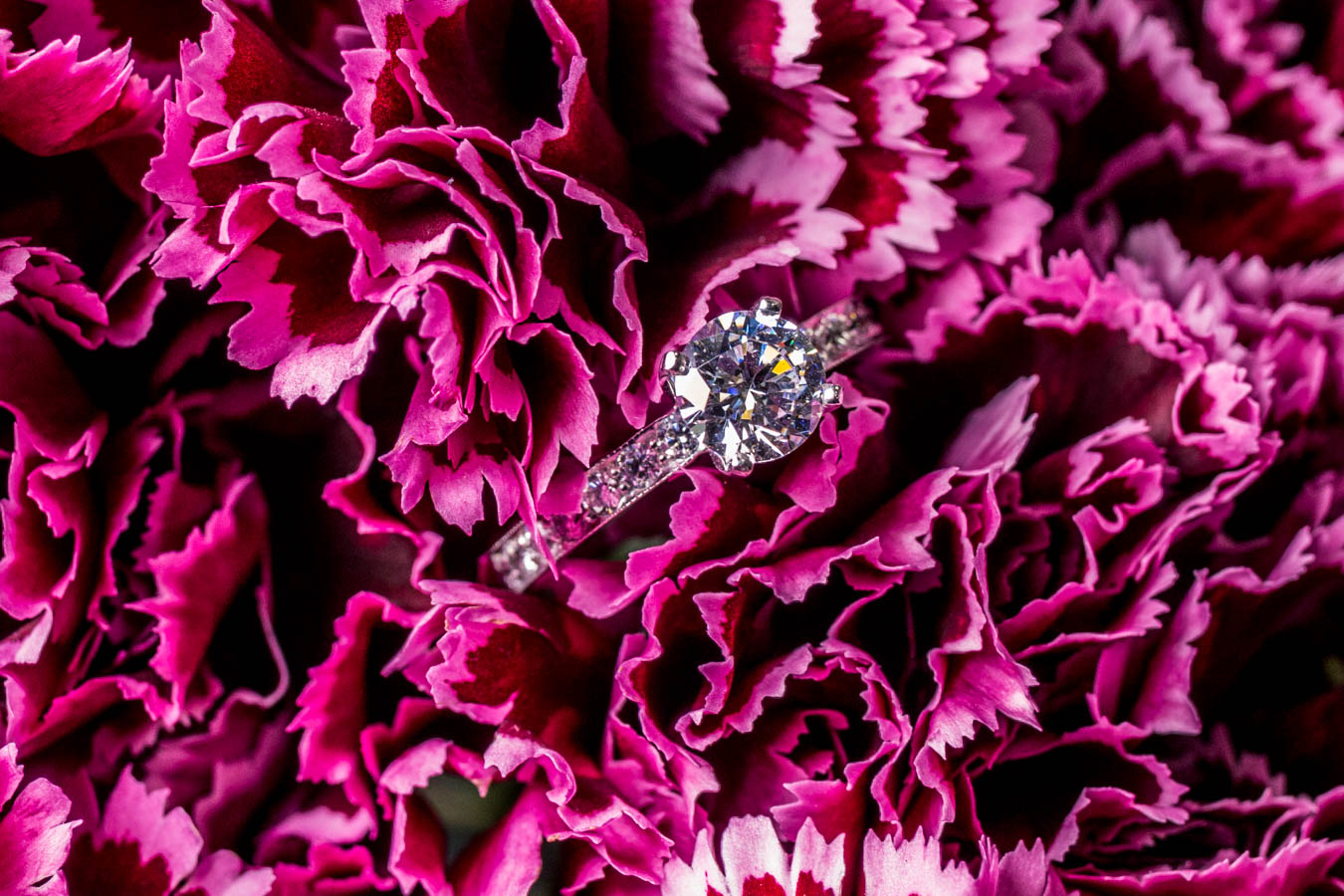 The Bethany Ring / Image: Catherine Viox{ }// Published: 10.8.19