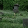 Union Cemetery in Toronto under scrutiny for unkempt conditions