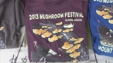 Mushroom Festival: 'They have always been magical'