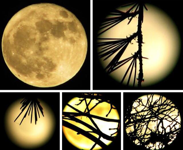 Do you have a photo of the supermoon? Send it to us through burst.com/katu!