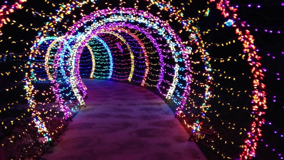 wps garden of lights has new features this year wluk