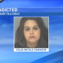 Babysitter accused of causing 4-month-old infant's death indicted