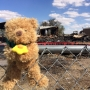 Neighborhood remembers young boys killed in Lower Valley fire