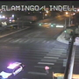 Pedestrian struck and killed near Flamingo and Lindell