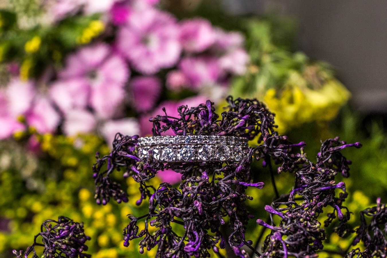 The Mezzaluna Pave and the French Pave Rings / Image: Catherine Viox{ }// Published: 10.8.19