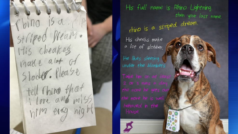 Dog left at shelter with heartbreaking story written by a