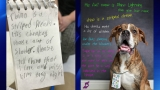 Dog left at shelter with heartbreaking story written by a little girl who loved him