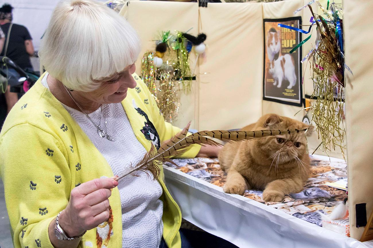 <p>Donna Zimmerman with Rickey / Image: Allison McAdams // Published: 4.16.18</p>