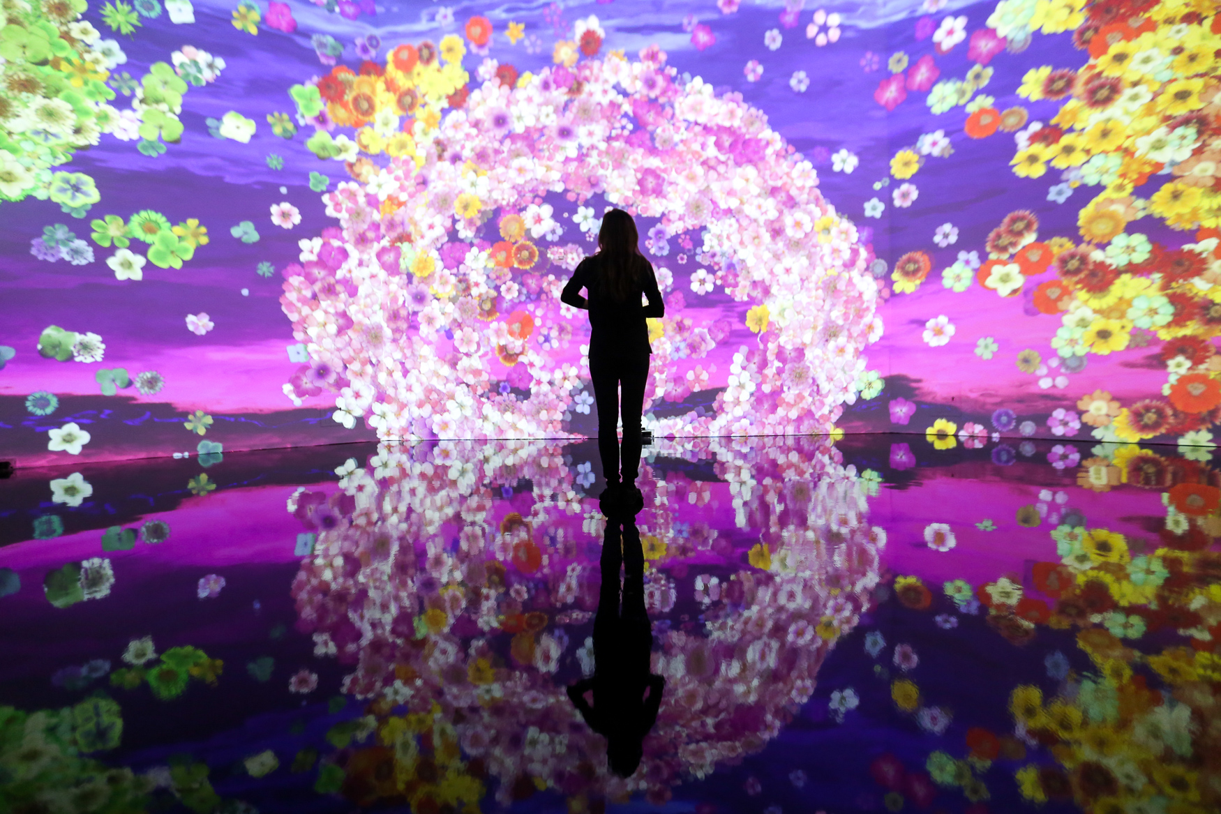 Artechouse's spring exhibition 'In Peak Bloom' opens March 20 - just in time for the actual cherry blossoms. The new augmented reality exhibitions include an atrium full of responsive, projected blooms, plants that respond to your body's electrical currents, a Japanese fable told in virtual reality and, of course, cocktails. Every piece of art in this exhibition was made by women or women-led teams, including an installation from Design Foundry, a local group. Like the cherry blossoms, the exhibit won't last long - it'll be over by May 27. Adult tickets are $16, which you can by at{ }https://www.dc.artechouse.com/. (Amanda Andrade-Rhoades/DC Refined)