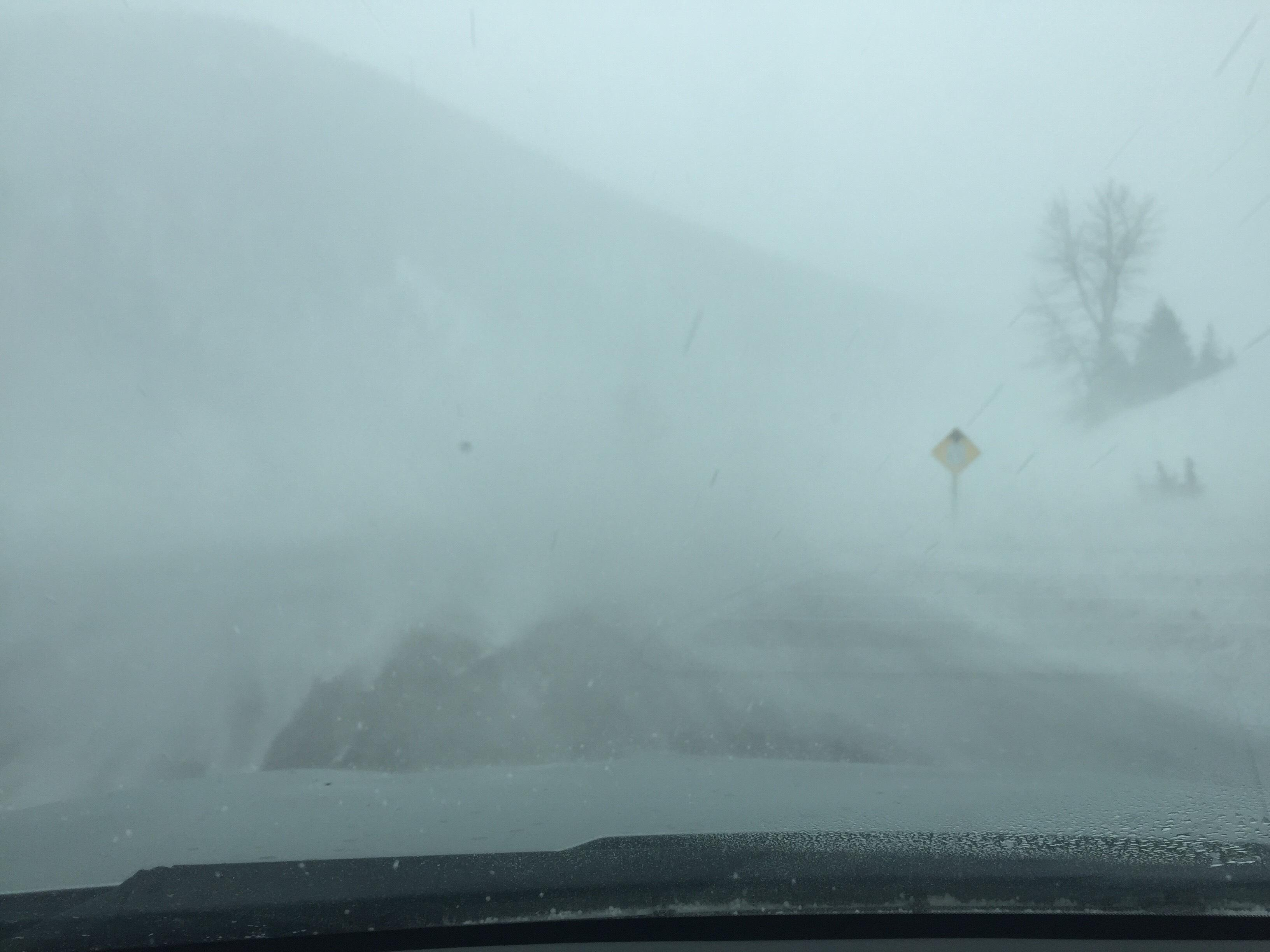 Low visibility in West Glacier. Photo Credits: MDT<p></p>