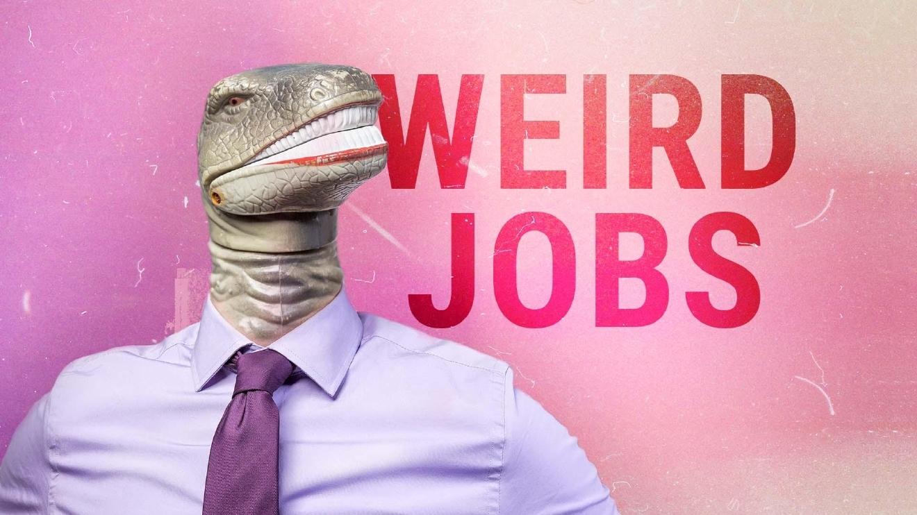 here are the weirdest of the weird jobs we covered in 2016 circa here are the weirdest of the weird jobs we covered in 2016 circa news learn think do