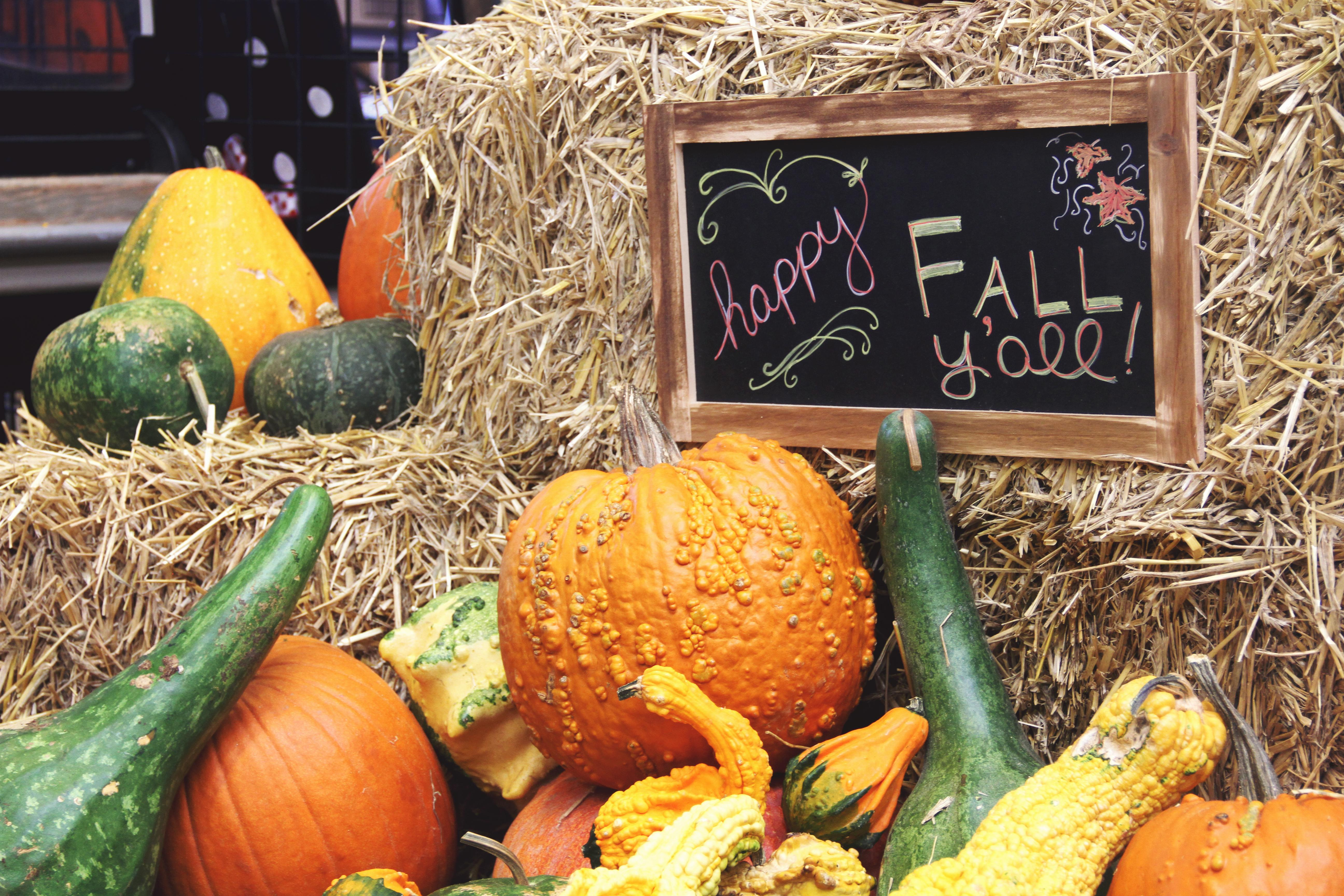 The WNC Farmers Market in October 2017. (Photo credit: WLOS Staff)