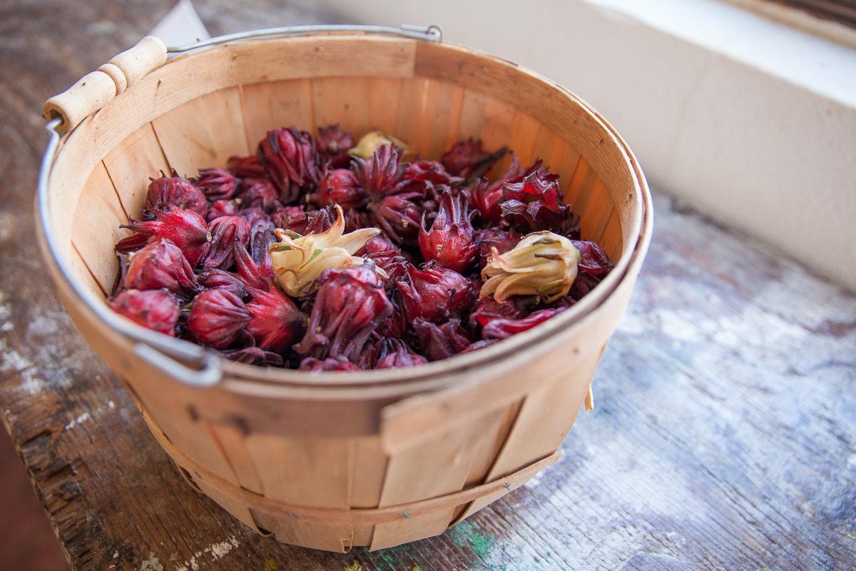 Hibiscus calyces at Flora's organic farm shop San Jose del Cabo (Image: Paola Thomas / Seattle Refined)