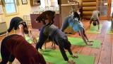 NH farm offering goat yoga classes