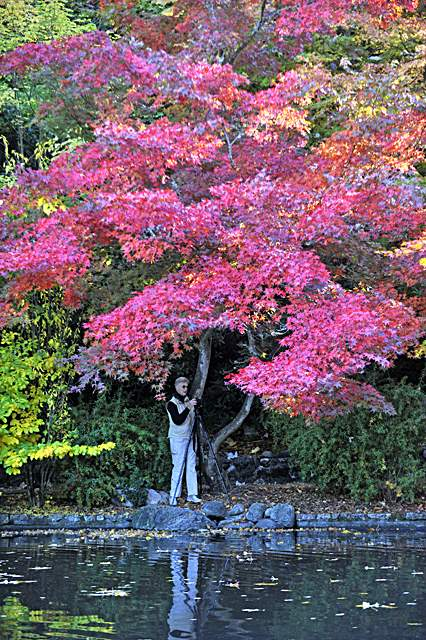 Fall Color at Lithia Park - Jamie Lusch