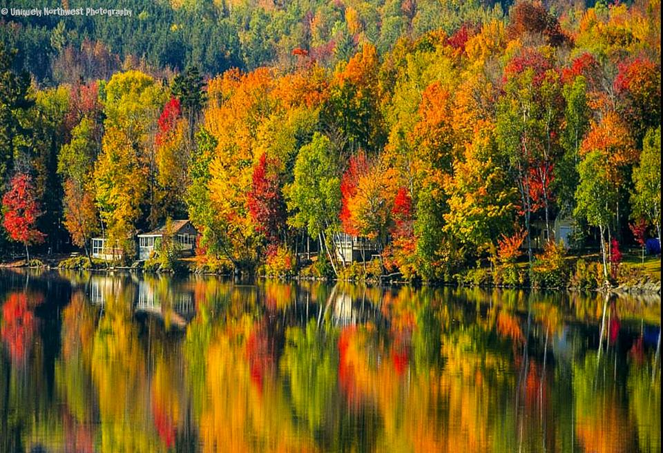 Photos Vibrant Fall Colors Around The Pacific Northwest