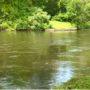 Police advise to be aware of surroundings as river rescues on the rise in Emmett Township