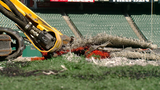 New turf installed at Paul Brown Stadium for Bengals