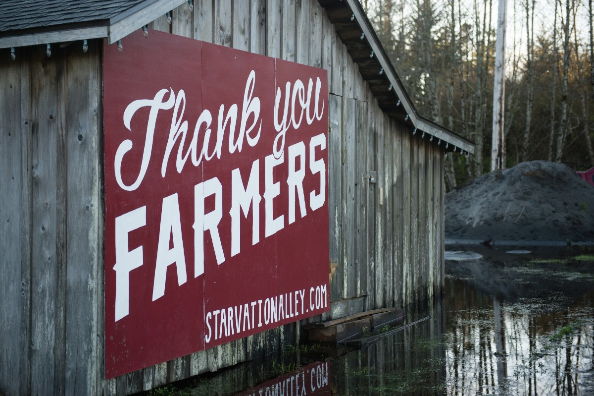You can't miss Starvation Alley's picturesque cranberry fields driving into town. (Image: Chona Kasinger / Seattle Refined)