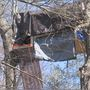 Roanoke County tree sitter cut off from supplies