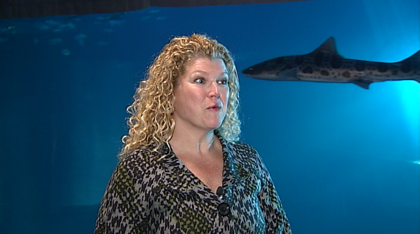 "The Oregon Coast Aquarium opened 25 years ago this May.  ""The aquarium is actually kind of the brain child of a lot of people in our community,"" said Carrie Lewis, the CEO and President of Oregon Coast Aquarium. (SBG)"