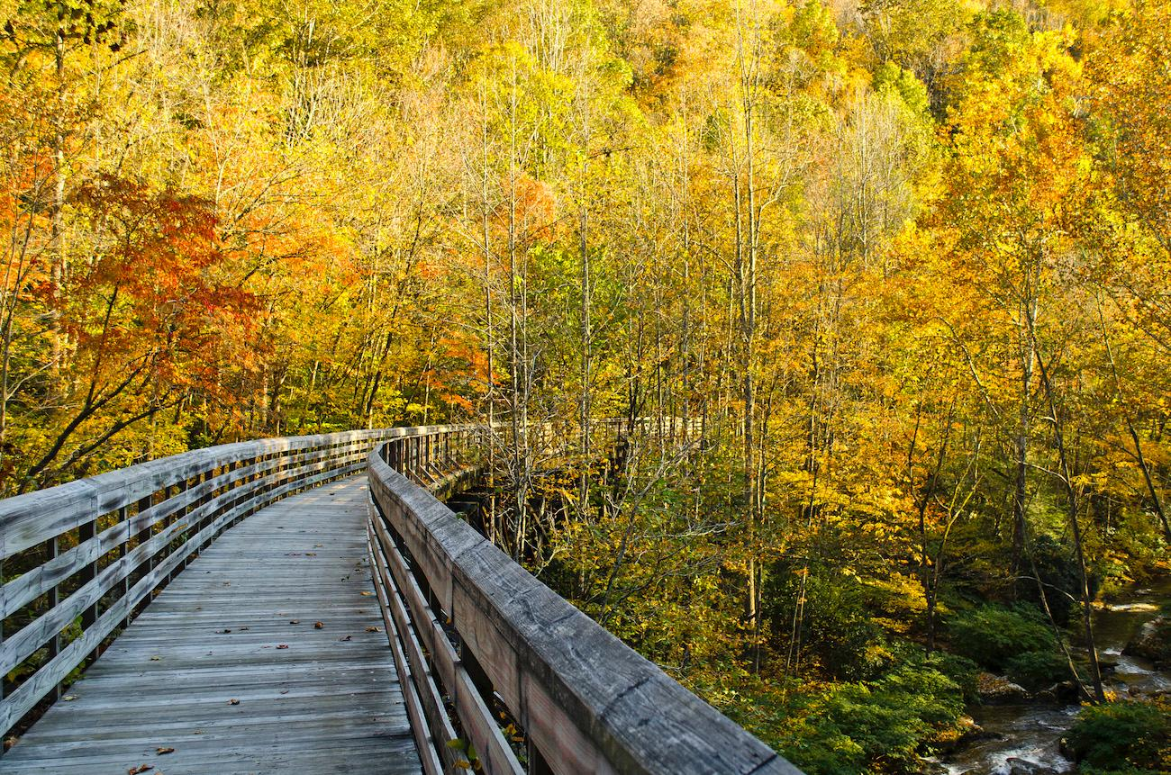 PLACE: Hawks Nest State Park in West Virginia / DISTANCE: 243 miles southeast of Cincinnati, less than a four-and-a-half-hour drive / Hawks Nest State Park in West Virginia is a 270-acre recreational area. Use the aerial tramway and hiking trails to float above (or immerse yourself into) the brilliant foliage. Located near Ansted, about 10 miles north of the New River Gorge Bridge, the park's scenic overlook provides a fabulous view of the rugged New River Gorge National River below. / Image courtesy of Adventures on the Gorge // Published: 10.19.19