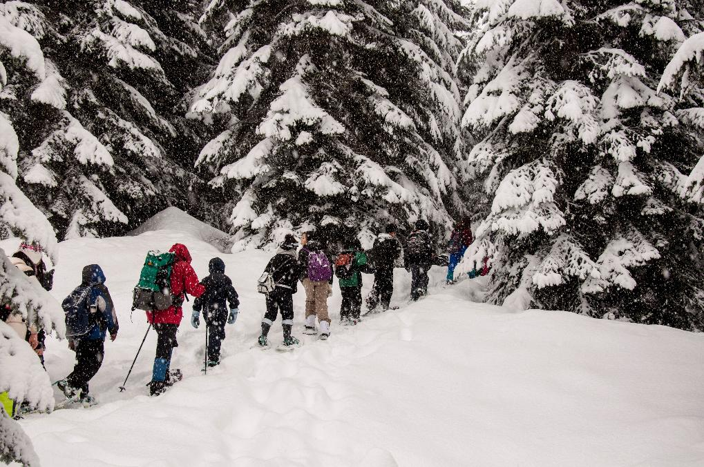 Learning to snowshoe is fairly easy but does take a bit of endurance. Also as a winter sport, it has some of the fewest equipment needs and a much shorter learning curve. (Image: Terrace Park Elementary)