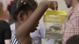 Pepco buys 8-year-old girl hamster after she accidentally sends letter meant for Petco