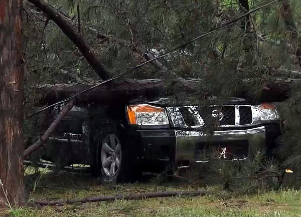 A Nissan SUV was crushed by a fallen tree during strong storms in Pickens County, Ala. on Thursday, April 11, 2013.