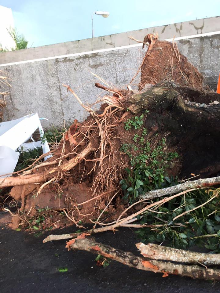 Damage in Puerto Rico (Submitted to Fox 17 News)