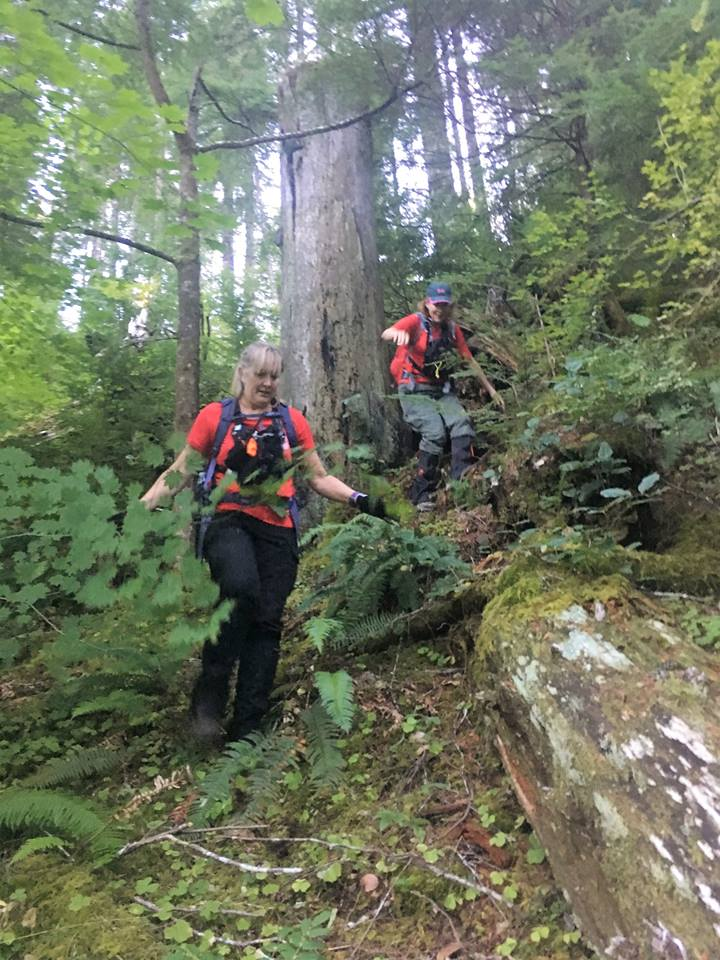 'One of our K9 teams working in Tillamook County' - Tweet from Mountain Wave Search and Rescue 2.jpg