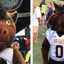 QUESTION OF THE DAY: Which Buster Bronco do you prefer as WMU's mascot?