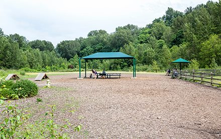 The City of Renton temporarily closed the Cedar River dog park Friday as a precaution after a recent outbreak of the Canine Parvovirus (Parvo) in King County. (Photo: City of Renton)
