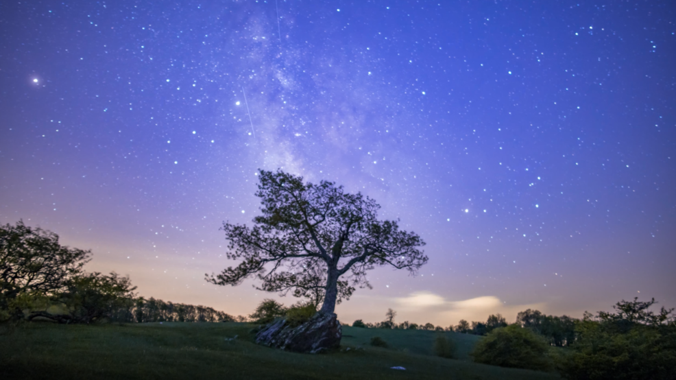 Inside the Storm: Time-lapse of a lightning storm before a rising Milky Way in Virginia
