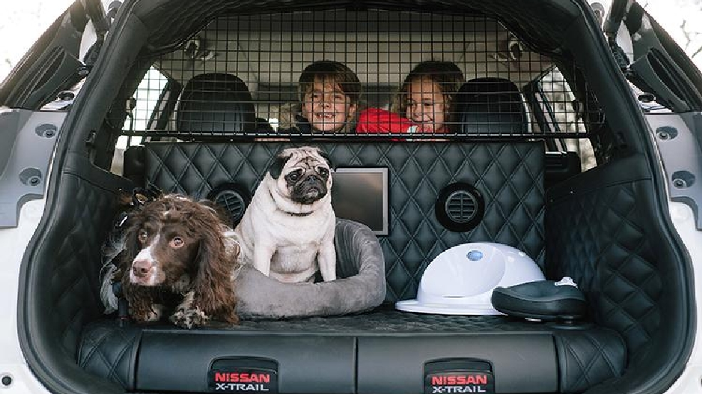 Nissan X-Trail 4Dogs.jpeg