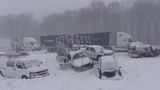 25 car pileup shuts down US 131