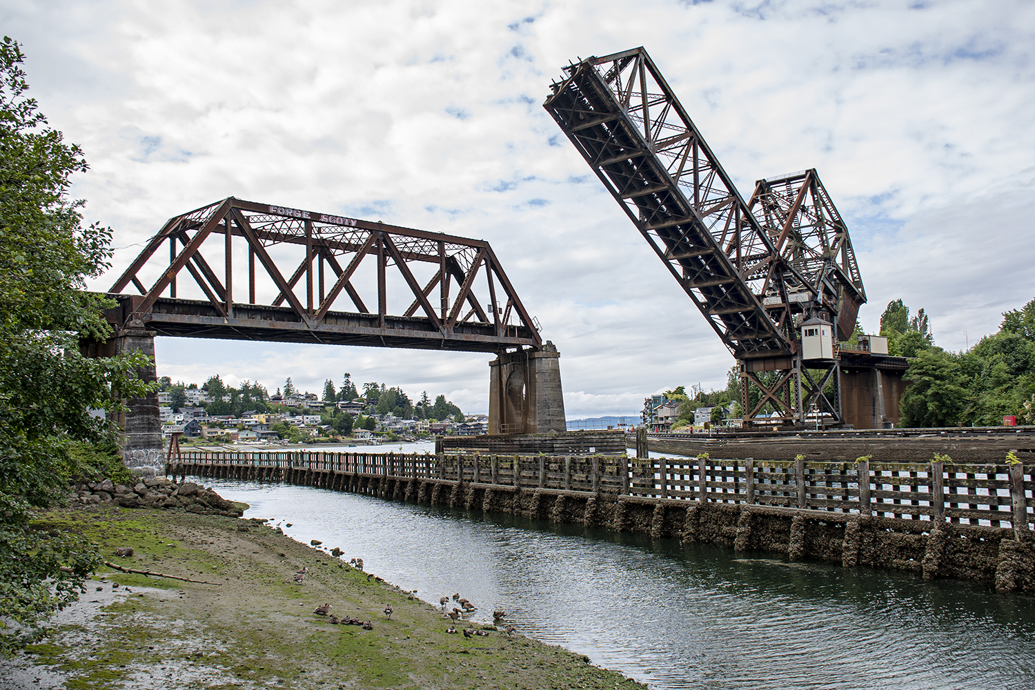 Built in 1914 by the Great Northern Railway, the Salmon Bay Bridge, or Bridge No. 4, is a Strauss Heel-trunnion, single-leaf bascule bridge that spans across Salmon Bay near Commodore Park. (Image: Rachael Jones / Seattle Refined)