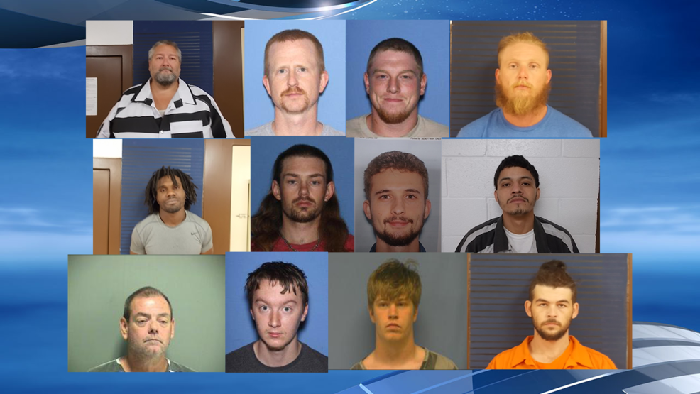 13 arrested following Dallas Co  online predator sting operation | KATV