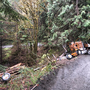 Man survives log truck crash outside Roseburg