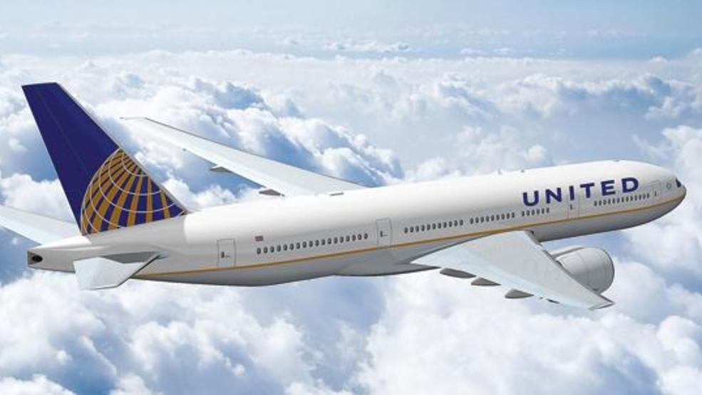 united airlines will stop allowing pets to travel in four cities