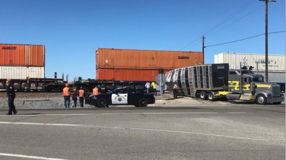 Cows killed as train crashes into cattle trailer | KMPH