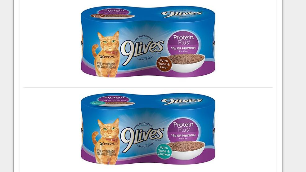 Recall Issued For Specific Lots Of 9Lives Protein Plus Canned Cat Food
